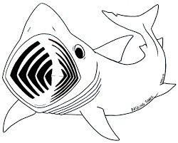 whale shark clipart line drawing pencil and in color whale shark