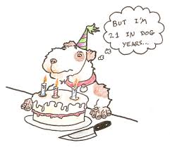 funny free jokes pictures funny birthday jokes free pictures