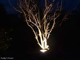 landscape tree lighting lights decoration