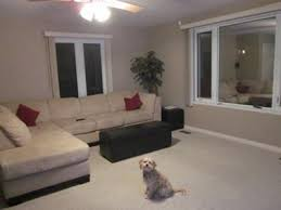 is grey a good paint colour for the living room