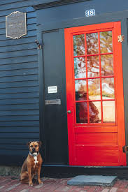 9 of the best paint colors for front doors