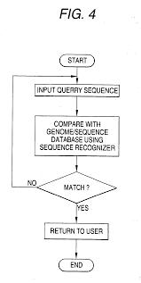 patent us20060228712 novel polynucleotides google patentsuche