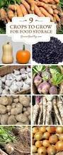 401 best ideas about gardens and plants on pinterest gardens