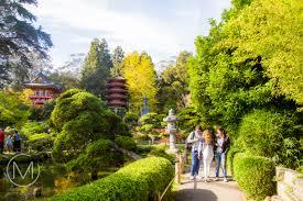 Inside The Japanese Tea Garden In San Francisco 9 15 Mersad