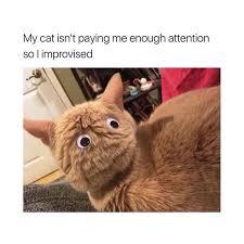 Googly Eyes Meme - you can t ignore me memebase funny memes