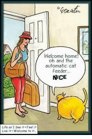Welcome Home Meme - welcome home oh and the automatic cat feeder nice life as i see it