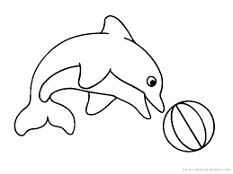 printable dolphin images dolphin tale coloring pages dolphin tale coloring pages to print