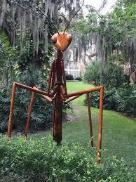 exploring the big bug invasion at harry p leu gardens news