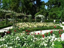 imagenes de jardines pequeños con flores diseño de jardines pequeños ideas planos diseno panama en pequenas