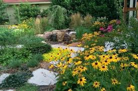 contemporary landscaping fall landscaping flowers contemporary landscape by field outdoor