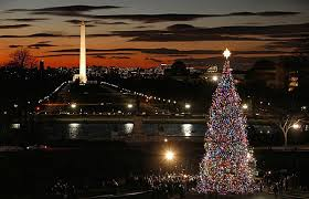 dc insider toursour top picks holiday lights in washington dc