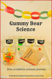 great science experiment for preschoolers with a free printable