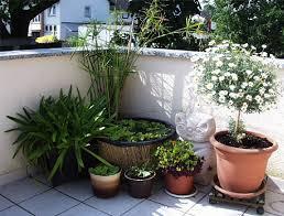 miniteich balkon miniteich