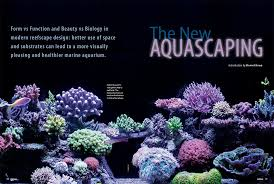 Reef Aquascape Designs Coral Magazine