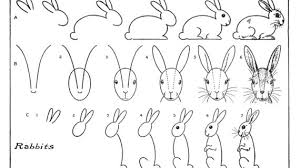 bunny drawing step by step how to draw a cute cartoon bunny rabbit