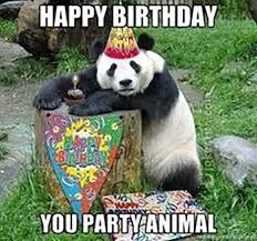 Birthday Party Memes - joke4fun memes party animal