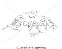 clipart vector of sparrows sketch illustration of 4 sparrows