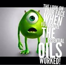 What Font Do Memes Use - 90 best essential oil humor images on pinterest oil quote