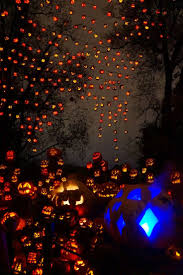 1005 best halloween pumpkins and gourds images on pinterest