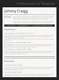 best professional resume template gfyork com