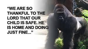 grieving the loss of a child family of boy who fell into zoo exhibit child safe grieving loss