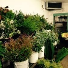 Send Flowers San Antonio - travis wholesale florists 20 photos u0026 18 reviews florists
