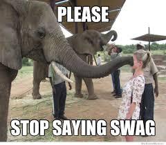Elephant Meme - elephant meme weknowmemes