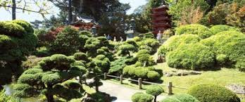 Golden Gate Botanical Garden 10 Reasons To Visit Golden Gate Park This Summer San Francisco