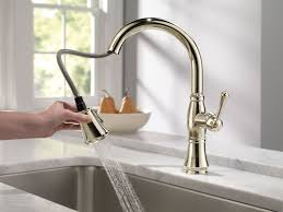Pull Out Sprayer Kitchen Faucet Kitchen Astounding Gooseneck Kitchen Faucet With Pull Out Spray