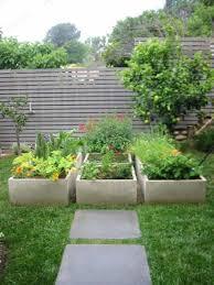 small modern garden ideas with containers modern garden ideas