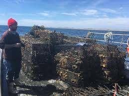fishing debris cleanup under way in the bay news wicked local