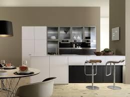European Kitchen Cabinets Black Cabinet Furniture And White Walls Kitchen Galley Designs