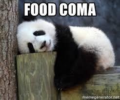 Food Coma Meme - food coma sleepy panda meme generator