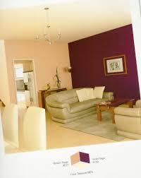 wall color combination amazing unique shaped home design