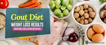 gout diet plan weight loss results before and after reviews
