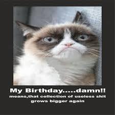 Meme Generator Grumpy Cat - meme maker grumpy cat images memes