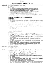 experienced professional resume template user experience developer resume samples velvet jobs