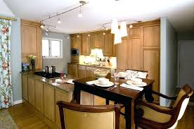Track Lighting For Kitchen Island Track Lighting In Kitchens 7 Pendant Lighting Track System For