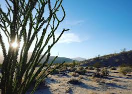 exploring anza borrego state park with the kids minitime