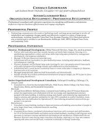consulting resume exles business consultant resume exle business development consultant