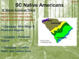 south carolina americans standard summarize the collective