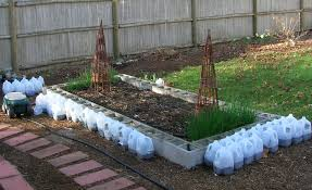 anyone here use cement blocks for raised beds