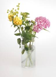 How To Grow A Bulb In A Vase Keep Flowers Fresh By Treating Them To Vodka Bleach Lemonade Or