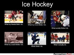 Hockey Meme Generator - nhl hockey memes 3 sports fan dog collars