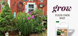 Garden Express Summer Catalogue - shop earl may online