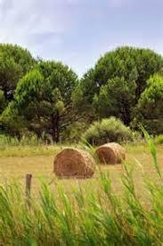 chambre d agriculture saone et loire beau chambre d agriculture saone et loire 7 jalogny la production