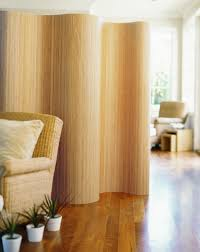 How To Divide A Room Without A Wall Top 25 Best Temporary Wall Divider Ideas On Pinterest Cheap