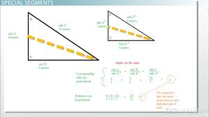proportional relationships in triangles video u0026 lesson