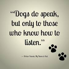 best 25 dog quotes love ideas on pinterest dog quotes pet