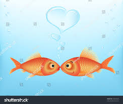 fish valentines valentines day fish letting out stock vector 45833026